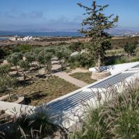 Secret garden house , Paros island