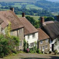The Maple - North Dorset