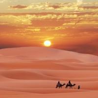Luxury sand camp