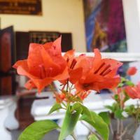 Laos Hmong Inn 龙门客栈
