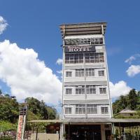 THE BEAUTIFUL MARIGOLD HOTEL
