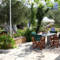Anthia's Country House