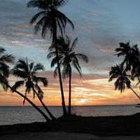 Molokai Shores 223