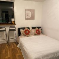 Room in Central London Overview Thames