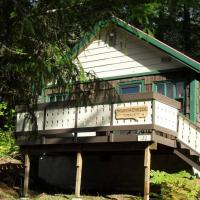 Mountainside Chalet - Tiny Home
