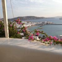 Mykonos Harbour View