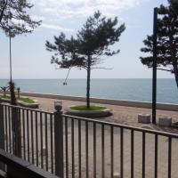 Kobuleti-Seashore-Sanapiro #66