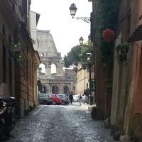 L'edera al Colosseo