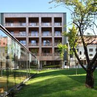 Hotel Balnea Superior - Terme Krka, hotel in Dolenjske Toplice