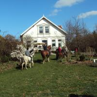 Farm stay Hof auf der Wurp