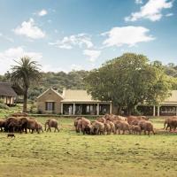 Gorah Elephant Camp