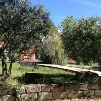 De la suite dans les oliviers