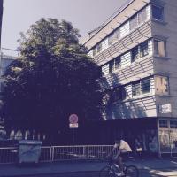 Apartment Ilica Britanac