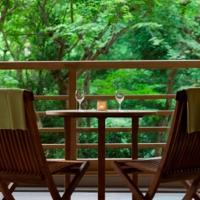 箱根小湧谷溫泉水之音傳統日式旅館