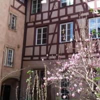 """Appartement confort """"Lisele"""" centre historique Strasbourg"""