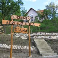 Pensiunea Agroturistica Diana