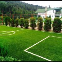 Vila Horia Bradet