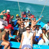 Dolphin Dhow Beach Safaris