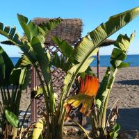 Bungalow Aloha Paraíso