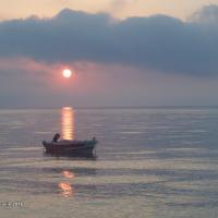 Sea Harmony