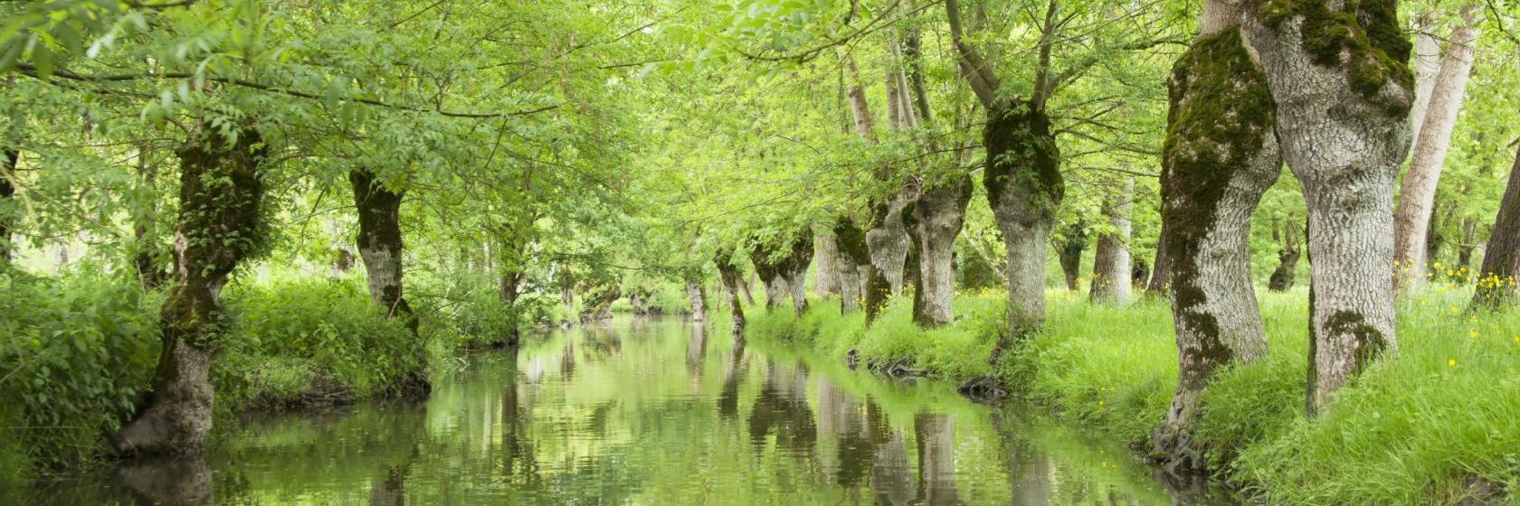 La Forêt Sur Sèvre France the 10 best deux-sèvres hotels — where to stay in deux