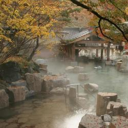 Properties with Onsen  4 properties with onsen in Nagano