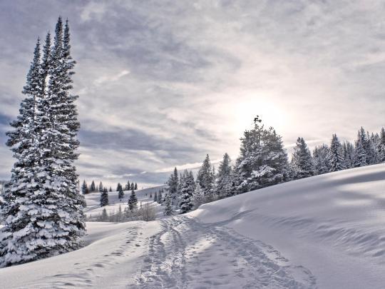 6 stations de ski à découvrir en famille