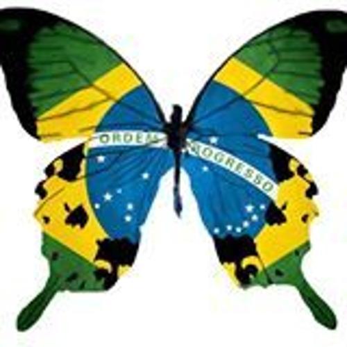 Brasilian Butterfly