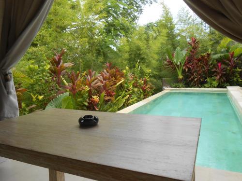 Sri Abi Ratu Pool Villa