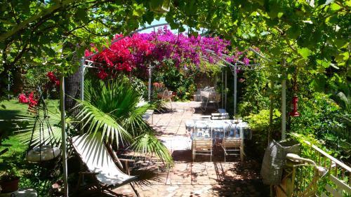 Un'oasi unica a Napoli :nostro Giardino Segreto Storico del XVIII secolo.