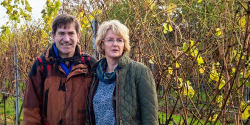 Chet and Waveney Valley Vineyard