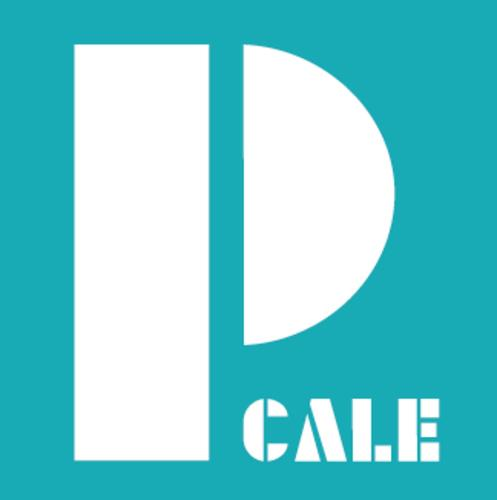 PCALE - Alojamento Local